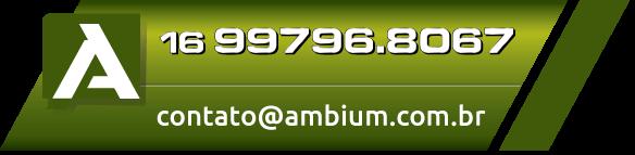 16 3329.3196 16 99796.8067 Ambium – Software de Gestão